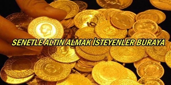 senetle-altın